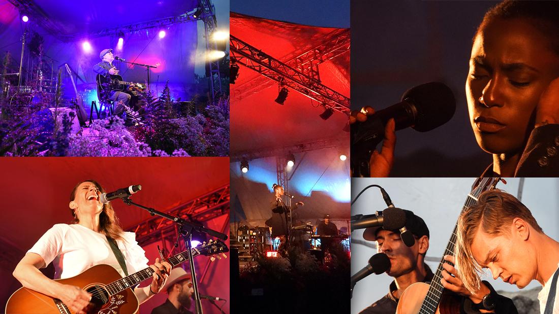 Fotocollage från Visfestivalen 2020